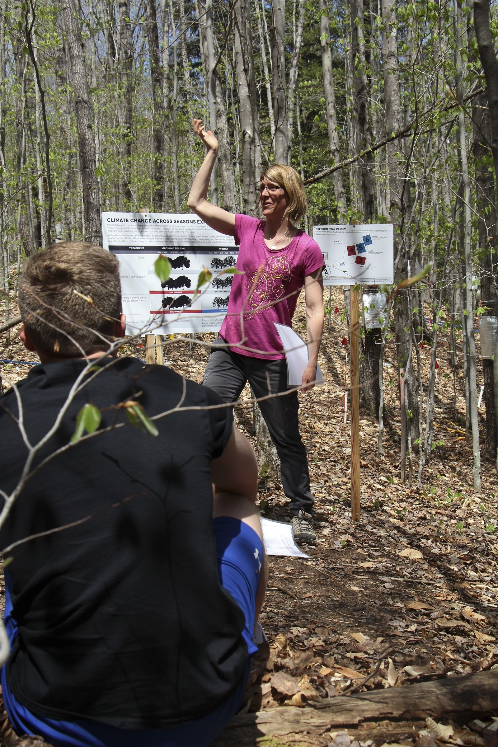 Learning About Forest Ecology During a Field Trip to Hubbard Brook Experimental Forest