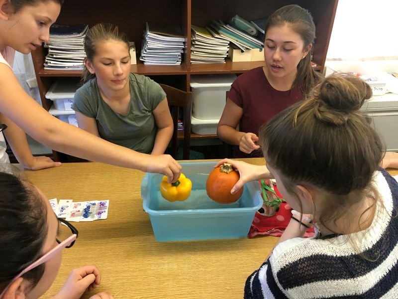 In 7th grade STEAM class, students students learn about weight, volume, buoyancy, and density of different size and weight objects.