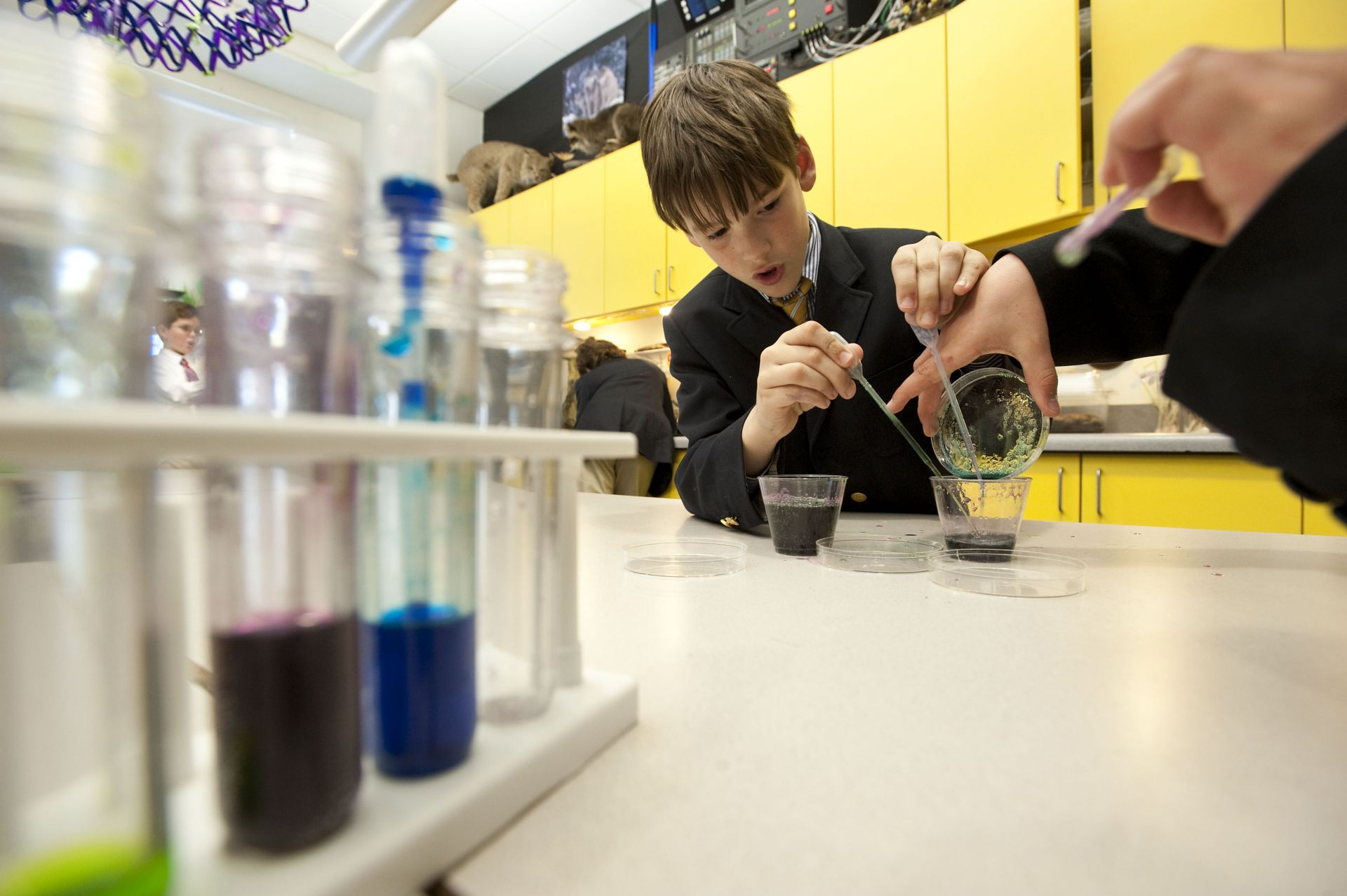 The Perrine Science Center: With plenty of classroom instruction space and clean, uncluttered lab space, the Science Center is perfect for experimentation and hands-on learning.