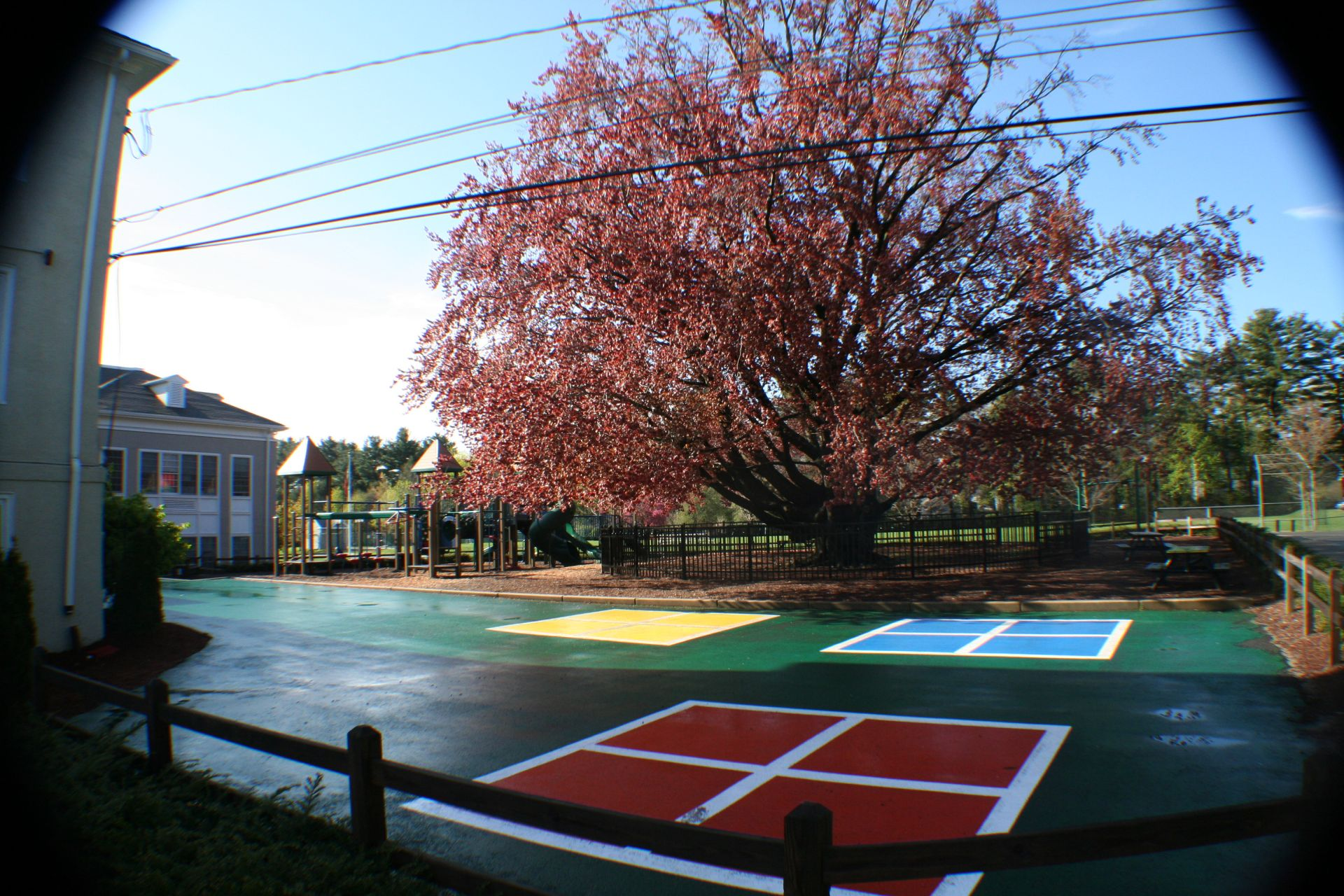 Fessy Playgrounds: Fessenden has multiple playgrounds and outdoor recreational facilities throughout the campus.