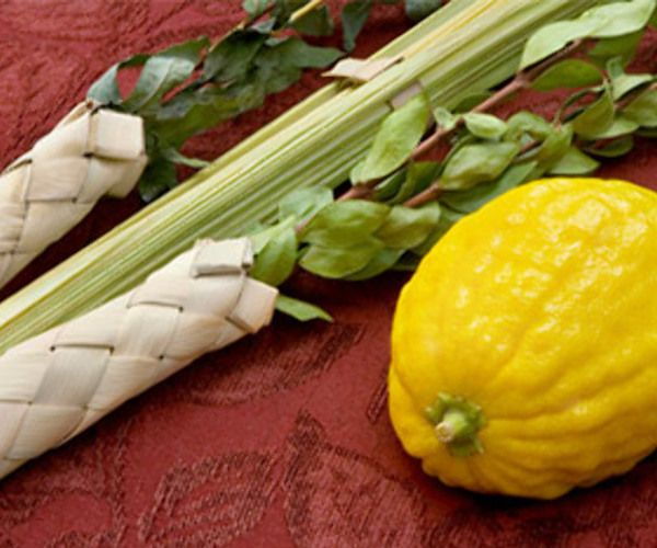 Catch the spirit of Sukkot at BT!