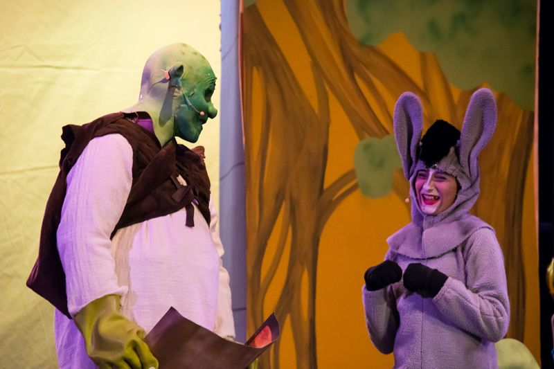 Shrek---Scheck-Hillel-Community-School-23