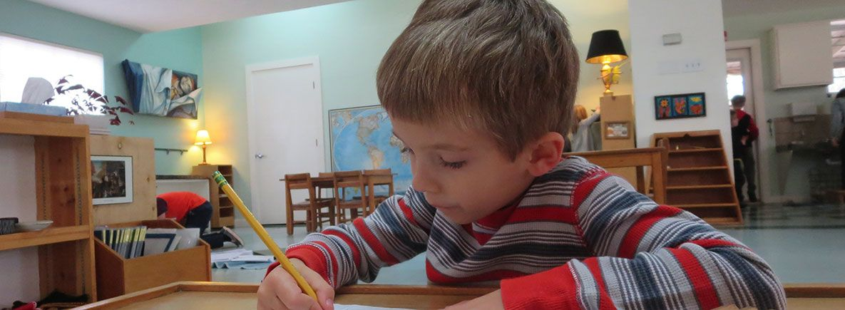 Austin Montessori School Faq