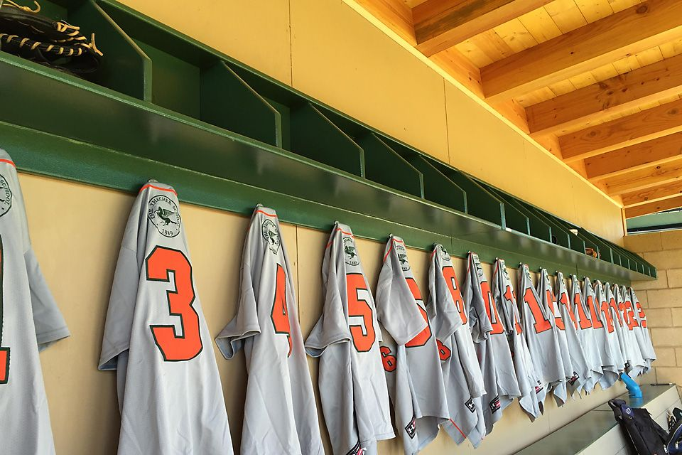 Inside the Home Dugout.
