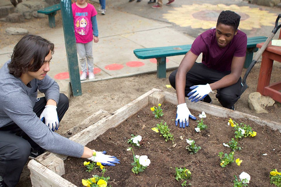 Helping out in community gardens and volunteering during local community and school festivals allows Thacher students to get to know the surrounding community.