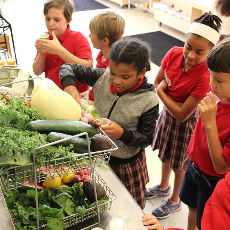 Would you believe our students clamor for second helpings of green smoothies?