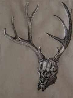 """Gray Skull"" Chalk on Paper"