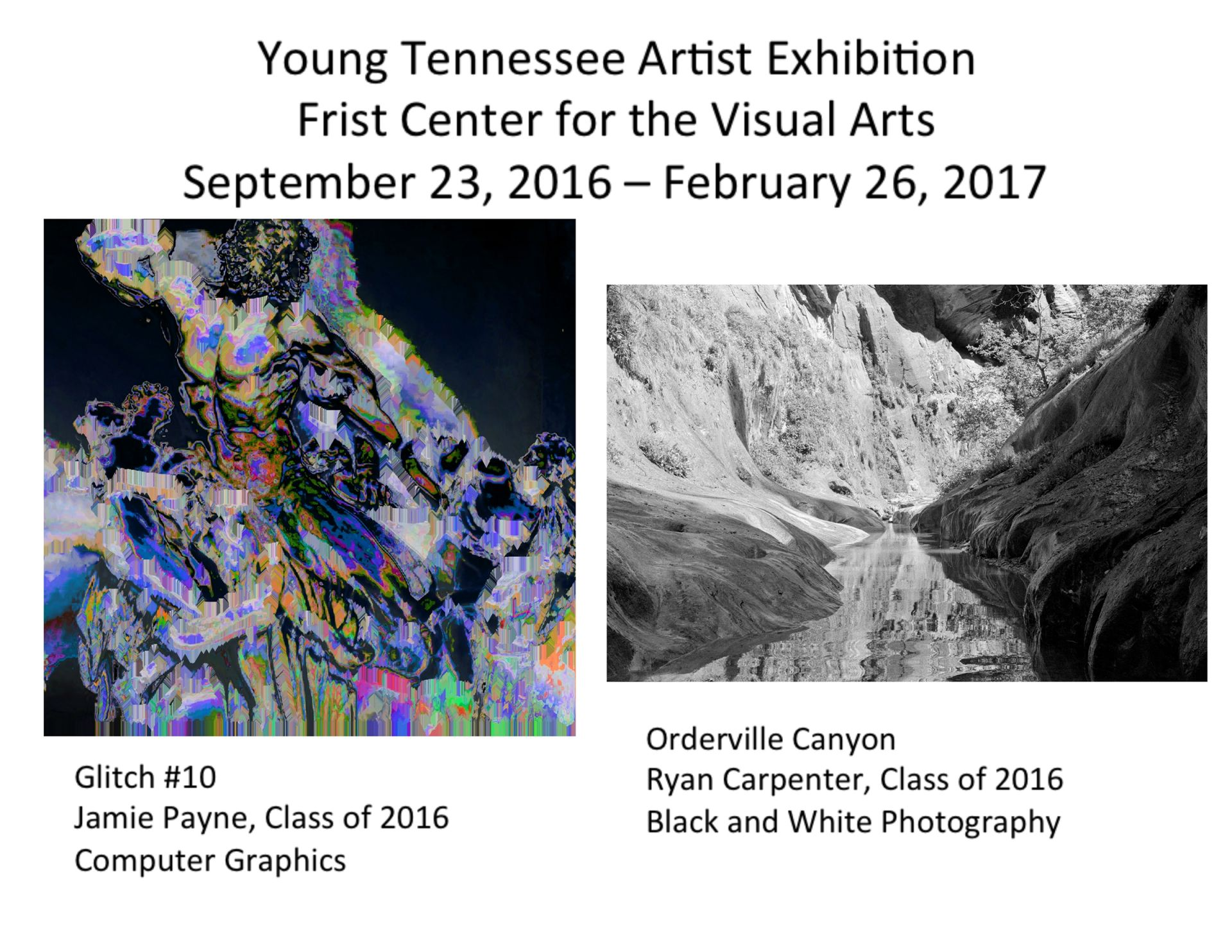 The 2016 Young Tennessee Artists, a biennial show featuring artwork from Tennessee students in Advanced Placement (AP) and International Baccalaureate (IB) studio art programs created during the 2015–16 academic year. Two students