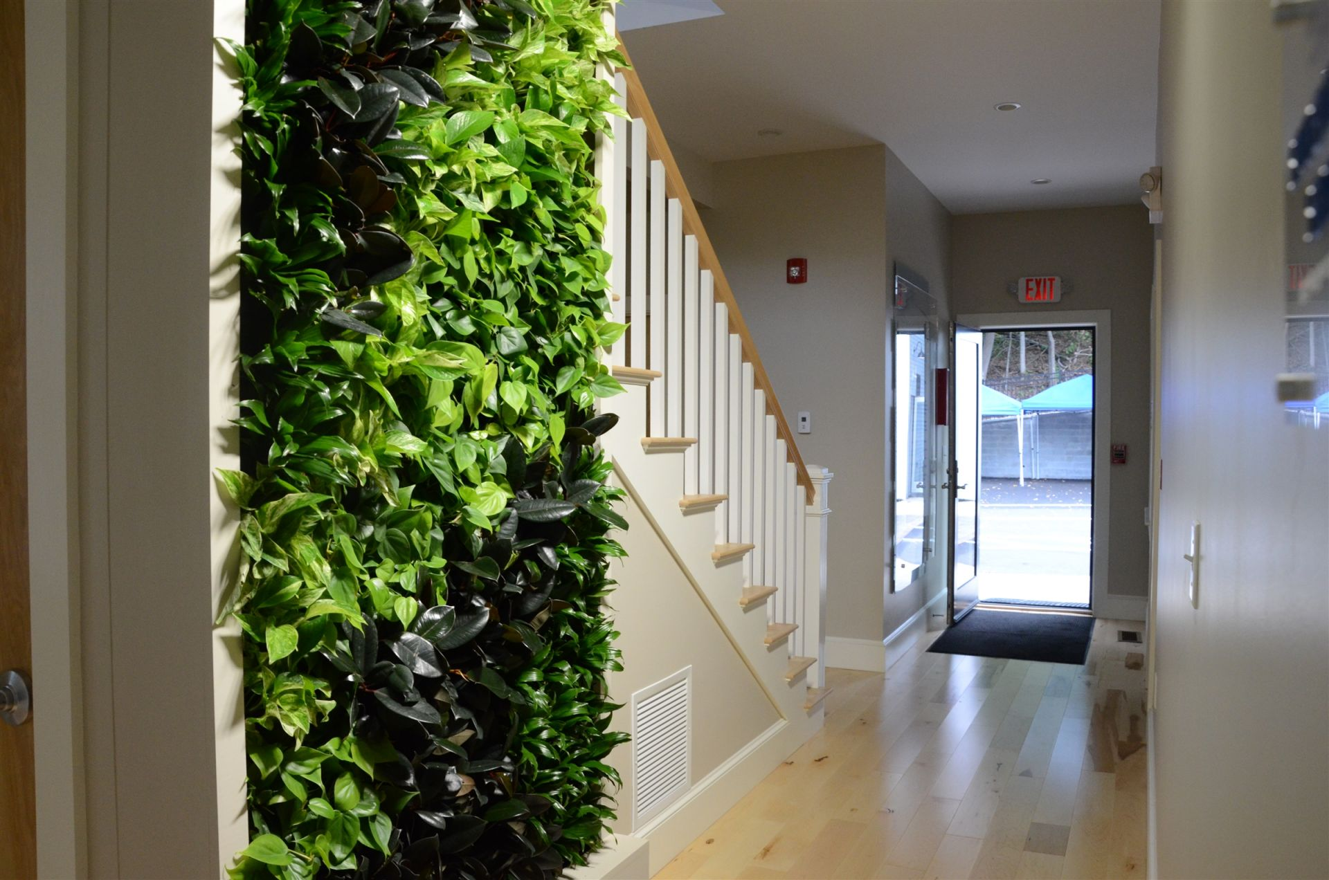 Living Wall in Oakes House