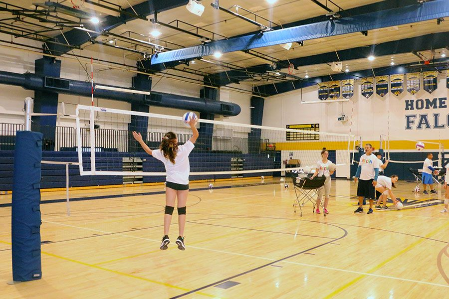 Falcons Summer Camp participants playing Volleyball on the Palmer Trinity School Gym during the Volleyball Conditioning Clinic