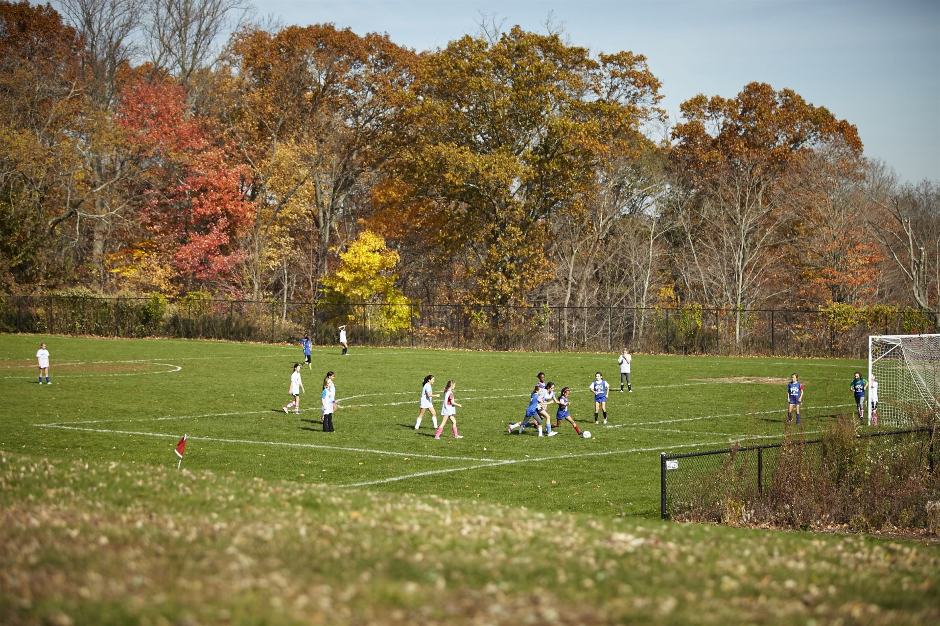 Five athletic fields host a variety of sports, physical education classes, field days and school events. Football, soccer, field hockey, softball, baseball, cross-country, and lacrosse, all take place on school fields.