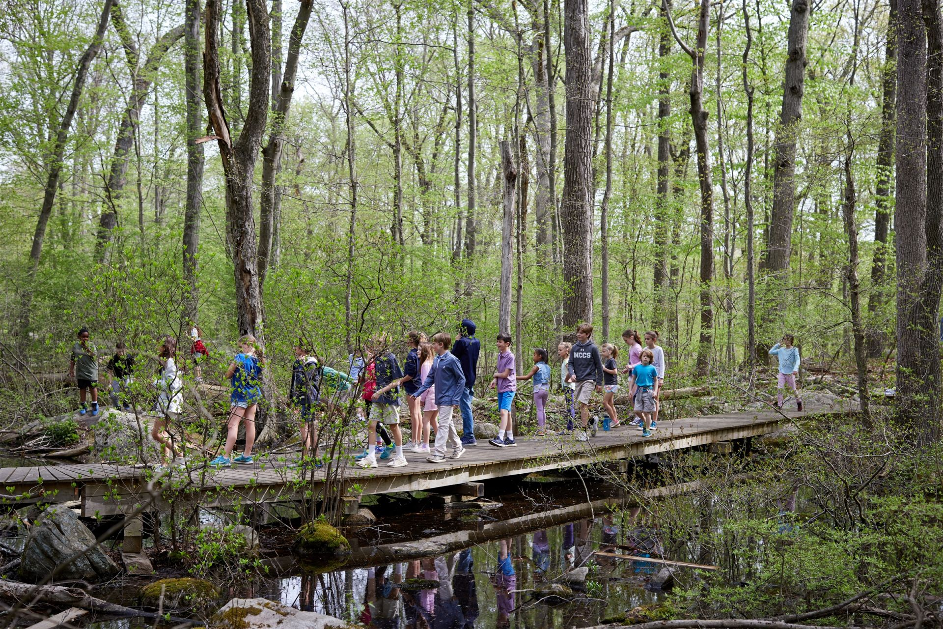 Country School is fortunate to have 35 acres of largely undeveloped forest with a wide variety of flora and fauna. Teachers and students in all grades and all subjects use the woods as an outdoor classroom. The acreage consists of marked trails and a low-ropes challenge course.