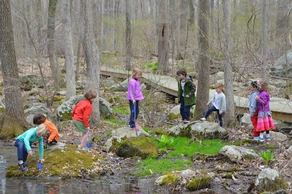 Children spend a part of everyday playing and learning outside on our 75-acre campus, including in the NCCS woods.
