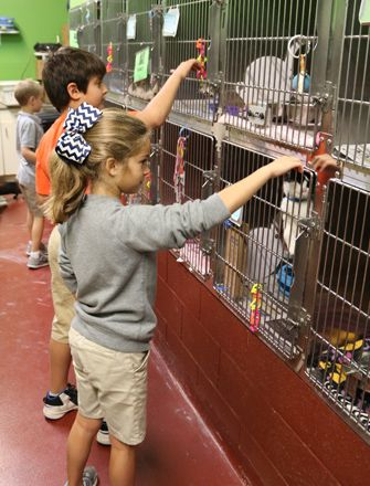 3rd grade performs community service at the Humane Society of Northeast Georgia