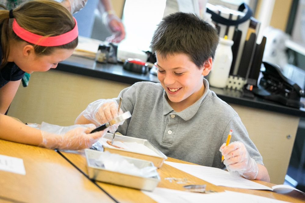 Elementary students conducting science experiments in a lab at Derby Academy in Hingham, MA