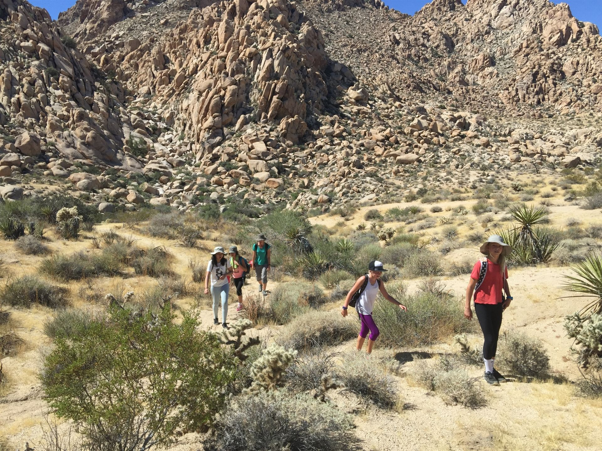 Seventh Grade trip to Joshua Tree National Park