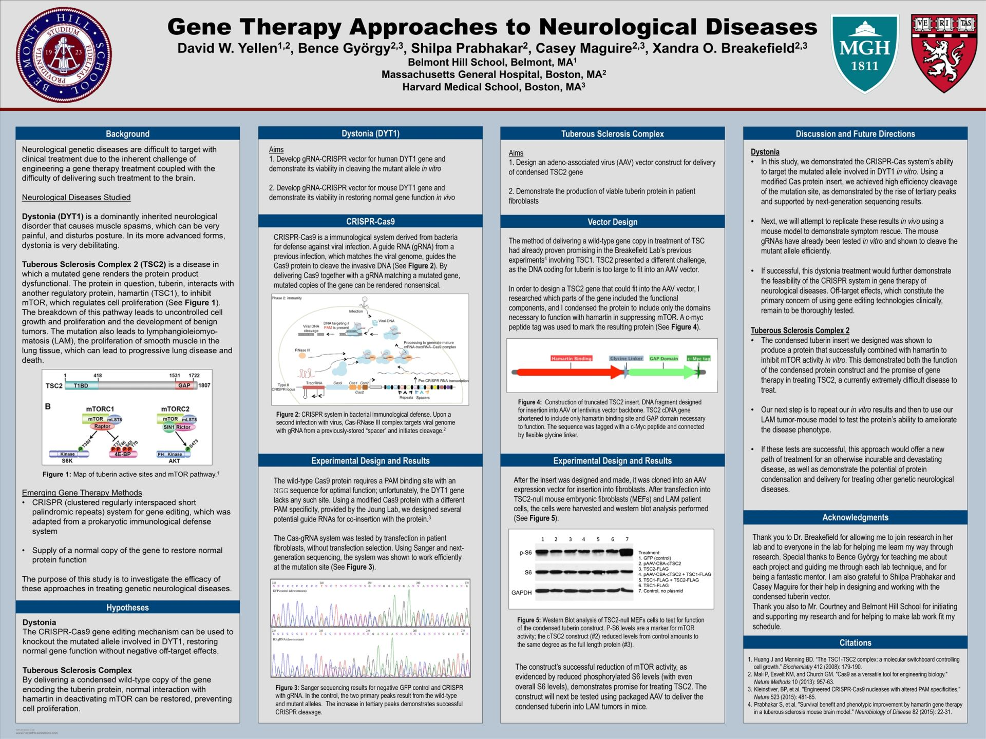 David Yellen-Gene Therapy Approaches to Neurological Diseases