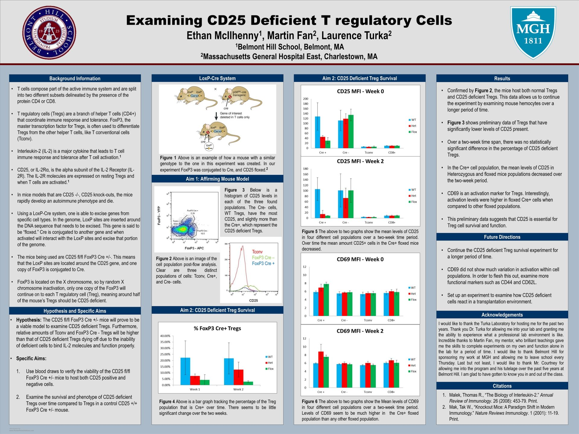 Ethan McIlhenny-Examining CD25 Deficient T Regulatory Cells