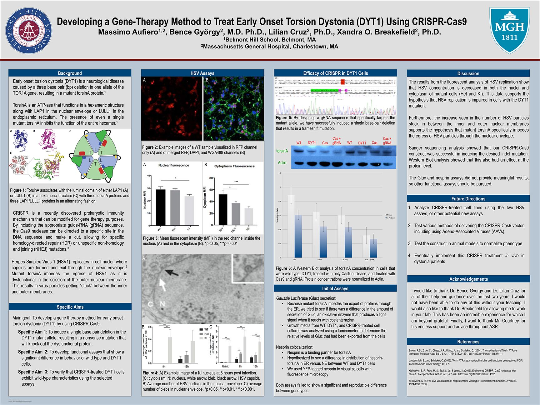 Massimo Aufiero '18 - Developing a Gene-Therapy Method to Treat Early Onset Torsion Dystonia (DYT1) Using CRISPR-Cas9