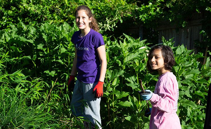 This is a photo of middle school students in the Ellis Earthkeeping Experience garden.