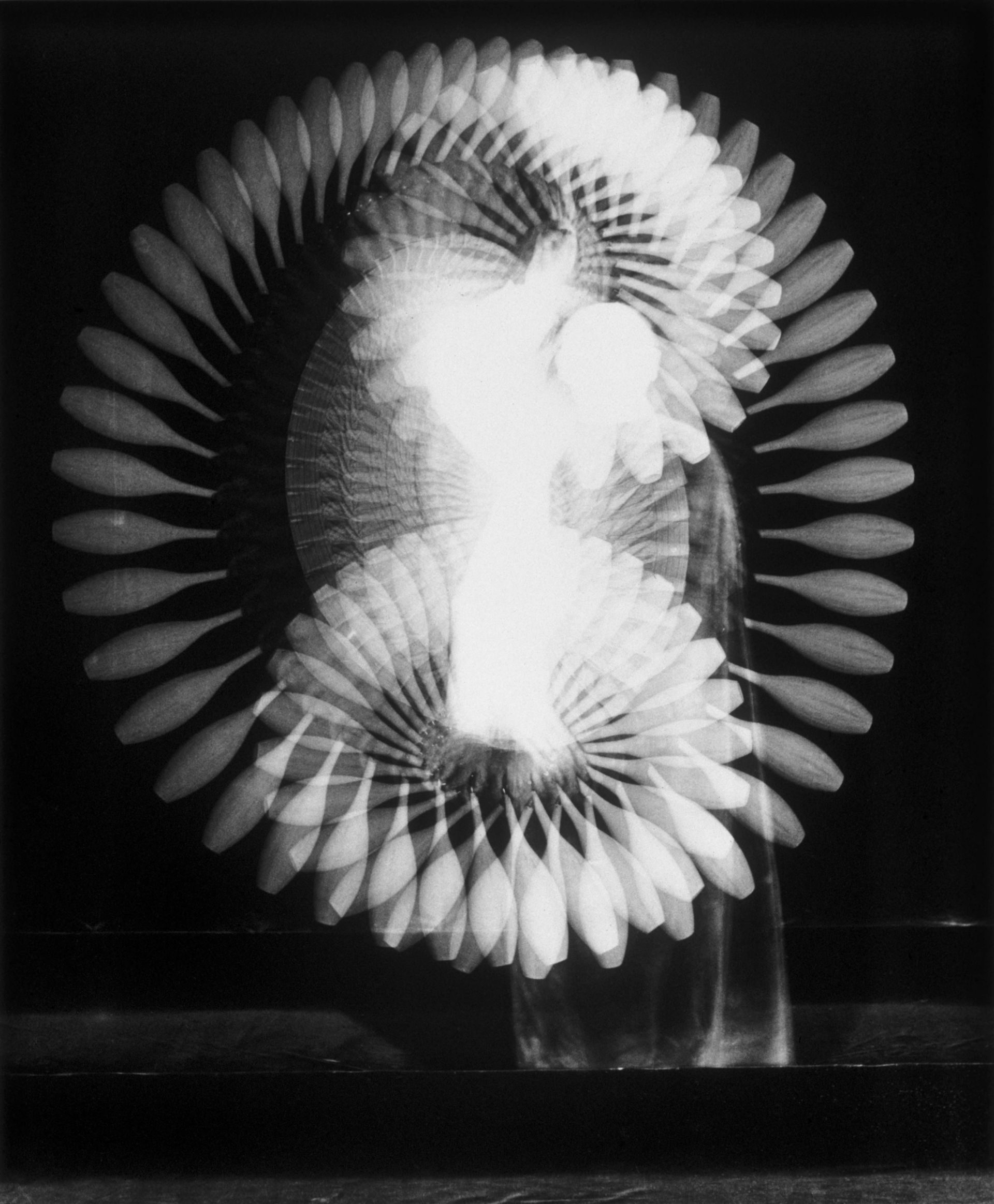 <i>Indian Club Demonstration, Multiflash,</i> 1939<br> gelatin silver print<br> 16 x 19 inches<br> Edgerton's high-speed light, flashing 100 times per second, sharply delineates each moment of the sequence. The great Bauhaus artist László Moholy-Nagy was so intrigued by this example of the new vision that he traded prints with Edgerton at a Chicago lecture in 1939.