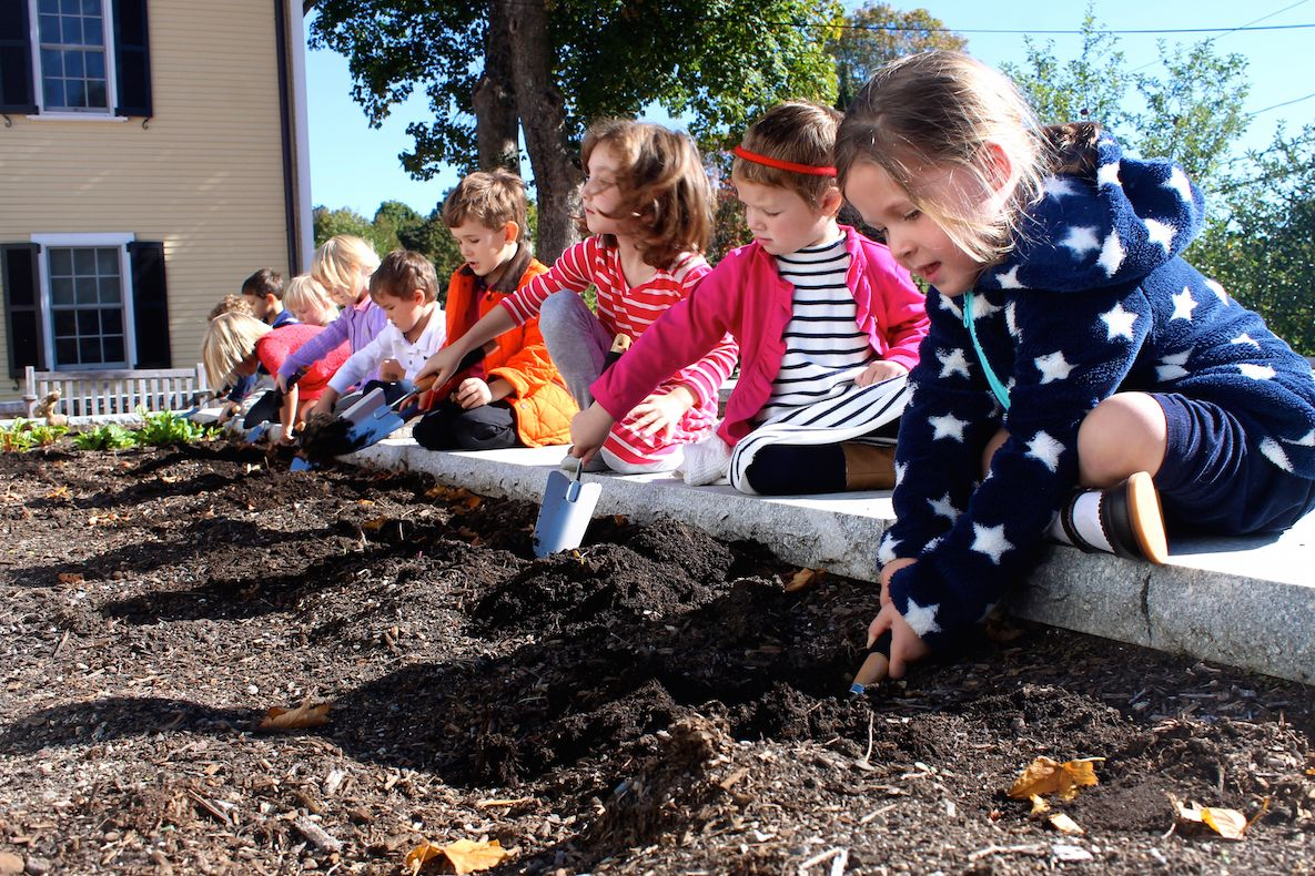 …as well as an outdoor classroom space, which includes raised garden beds where Primary Students cultivate their own plants and observe their growth over the seasons.