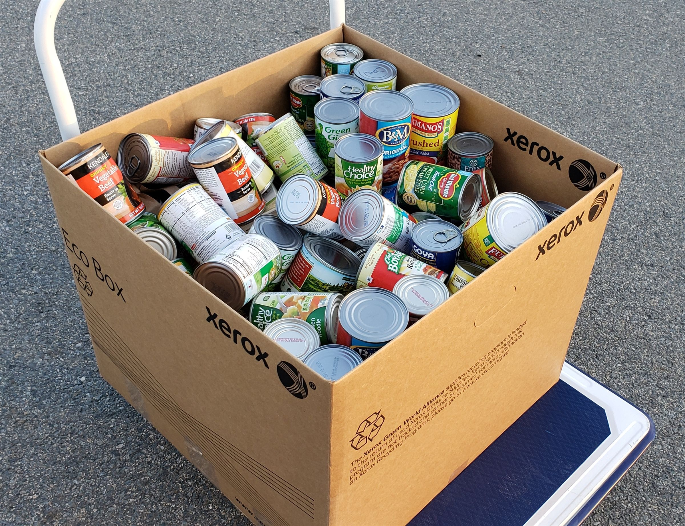 Lower School students conducted a food drive to support  Veterans Inc. in Worcester.