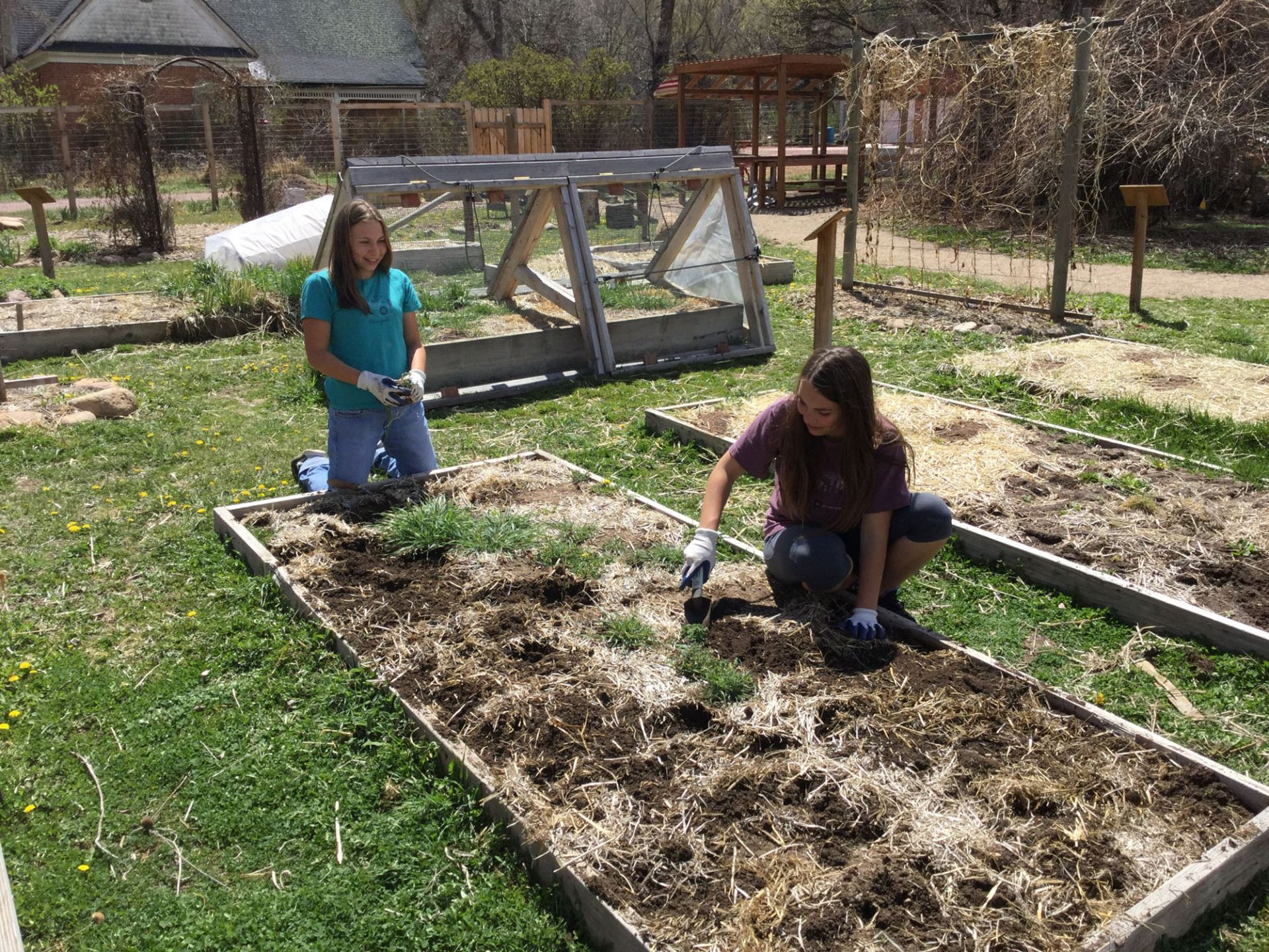 Gardening at Harlan Wolfe Ranch