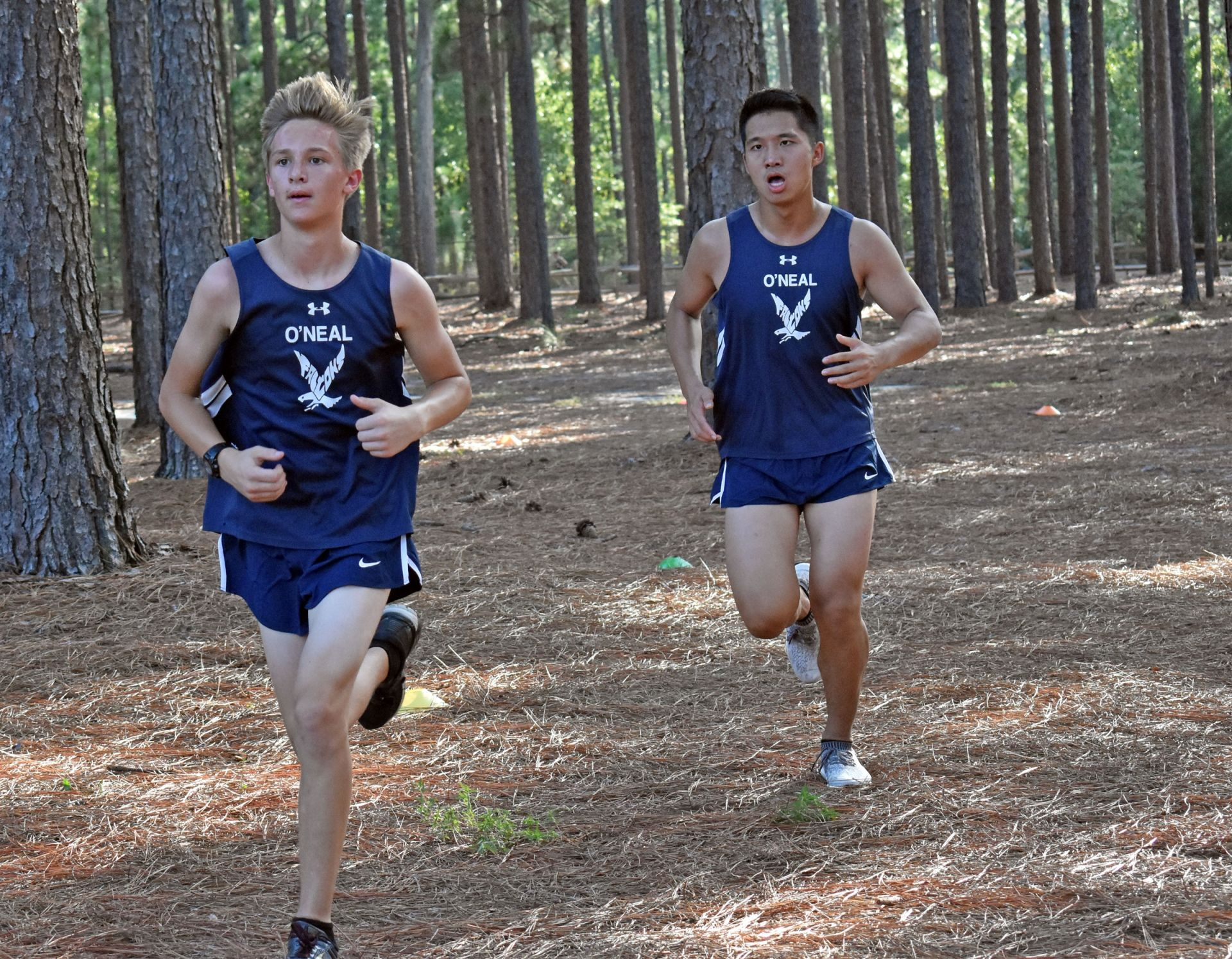 Middle School and High School students compete on the cross country team.