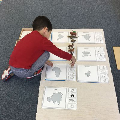 Geography and animal activity at #MontessoriDaySchool #MontessoriPreschoolToronto #RichmondHillMontessoriPreschool