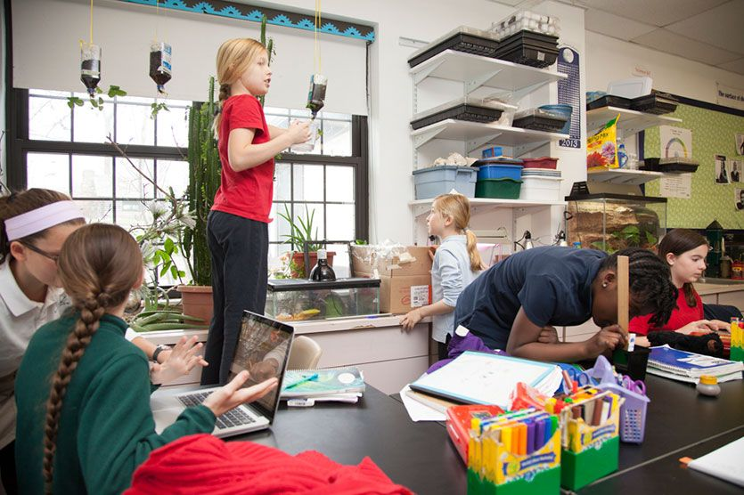 The Primary School science room is designed to spark girls' budding curiosity about the world around them. A coral reef tank, lizards, fish, and birdfeeders help to bring nature into the classroom. Hands-on projects, such as recreating the