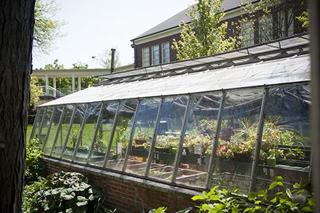 The Robbie Bermingham Greenhouse, located just to the right of our courtyard (used for our beautiful outdoor graduation ceremonies), allows students to learn the importance of caring for plant life.
