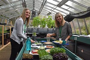 Microgreens are used in the LFCDS Lunchroom