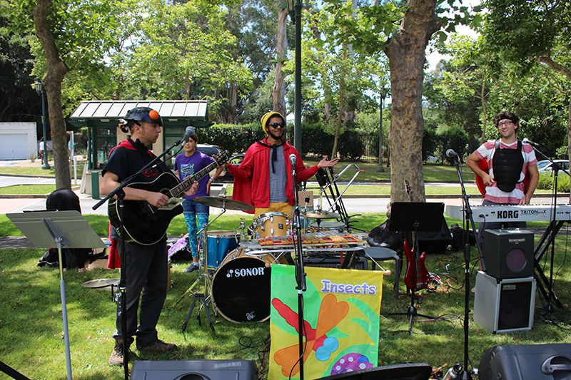 The Family Bug Band performing at our All School Picnic last weekend.