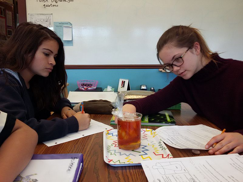In Science class, 7th graders use iodine and starch solutions to model diffusion across a cell membrane.