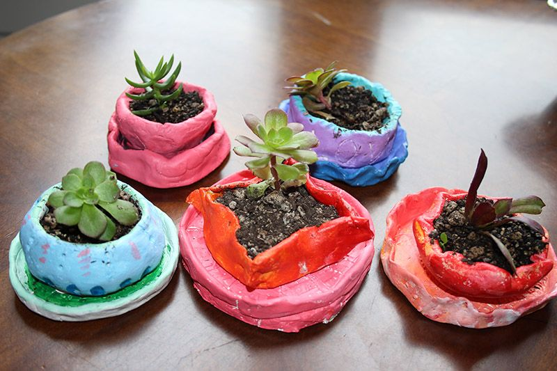 All Community Elective (ACE) Succulent Pinch Pots: Students make pinch pots and plant succulents propagated from the garden boxes.