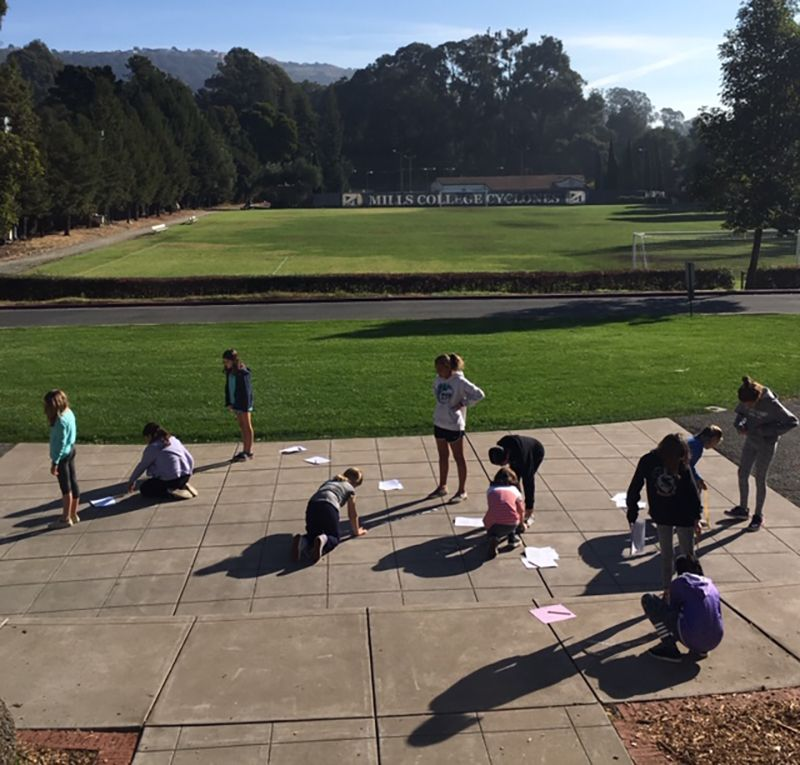 6th graders use shadows and proportions to measure the height of poles and trees.