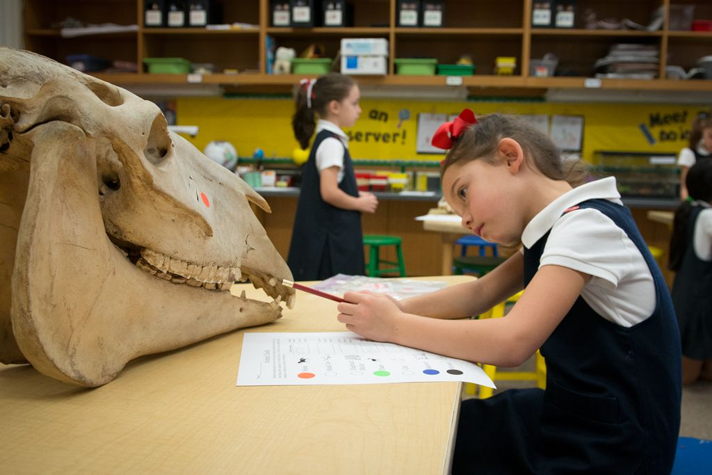 Lower School Science Class