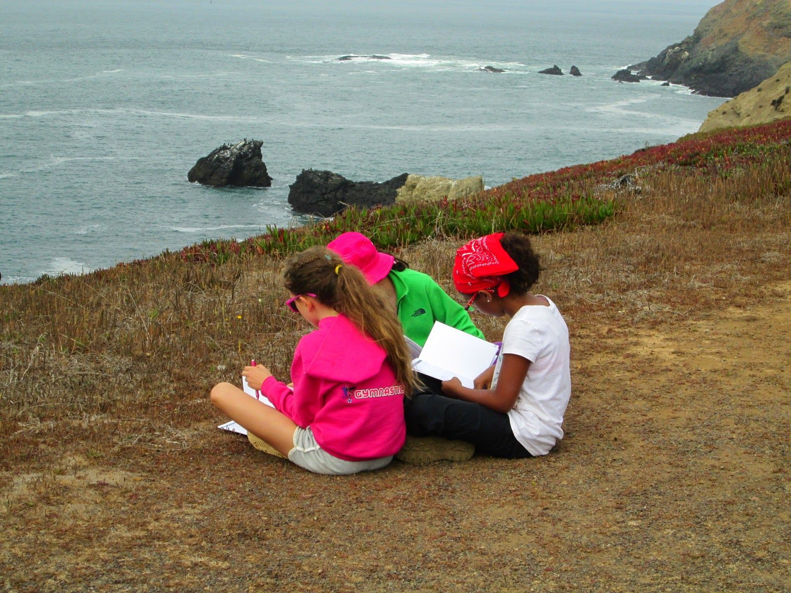 Grade 4: Three days, two nights – marine science trip, Marin Headlands