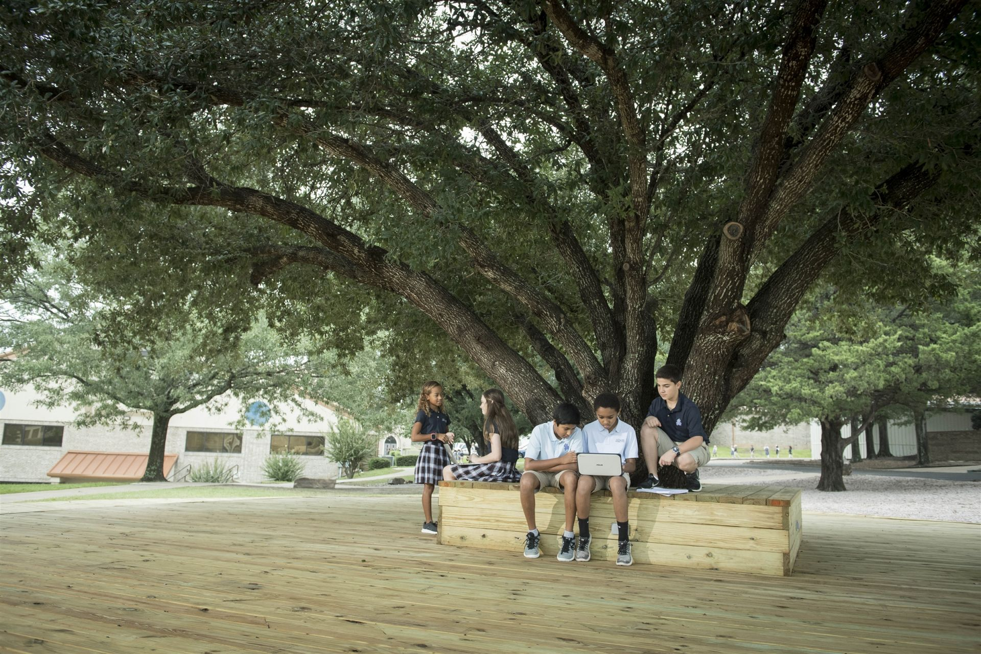 The tree deck is the center of campus. This space gives students a shaded place to study.