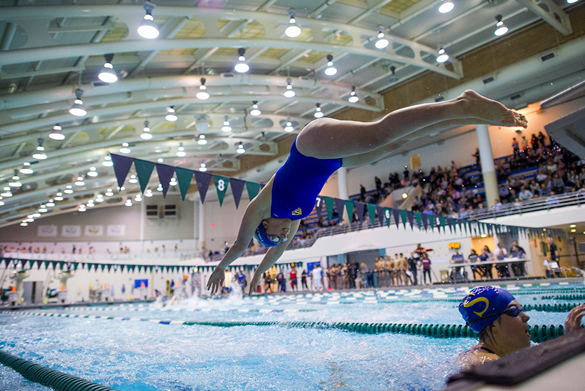 A Stingray dives in during a swim meet.