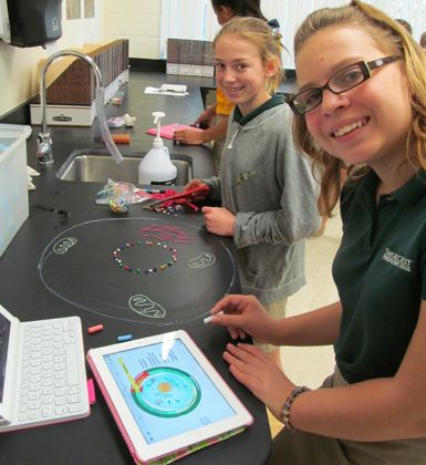Blending science and technology in the middle school classroom
