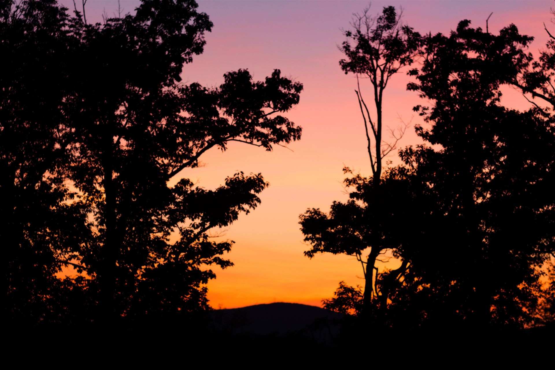 A glimpse of the Wapack Mountain Range from the Upper Gardens at sunset.