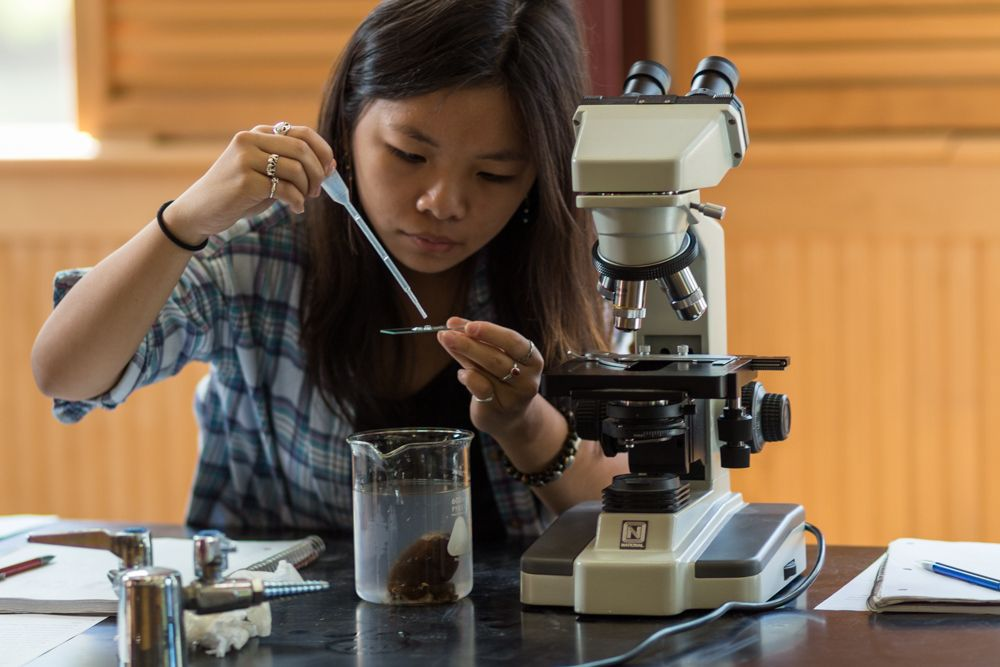 Li An Dezmelyk '17 carefully places a sample onto a slide to look at under the microscope.