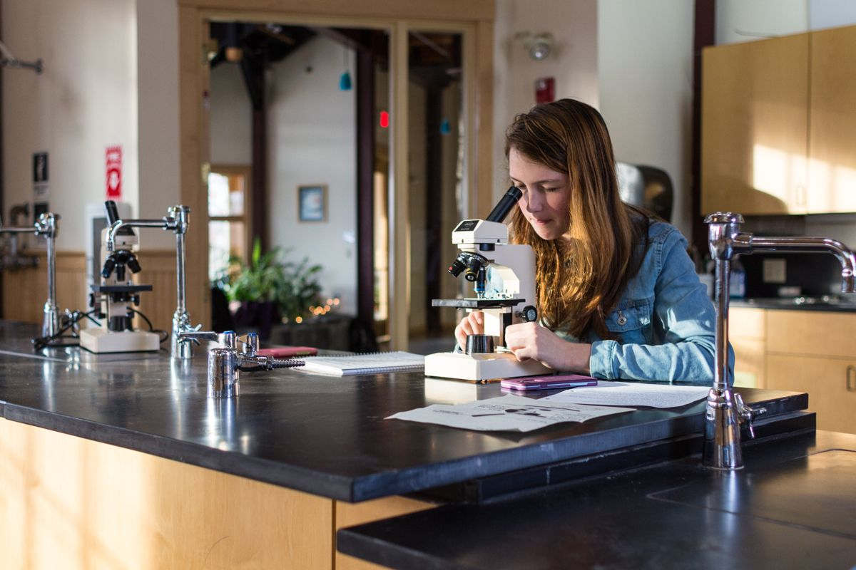 Cassidy Dufour '19 observes cell structure under a microscope in her afternoon Biology Lab.