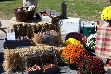 Mums, bulbs, and apples are for sale at Fall Fair.