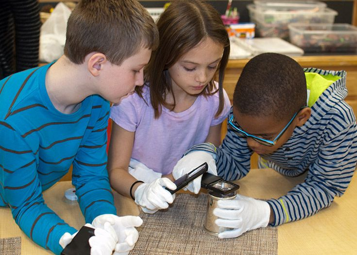 Science students at work in the science lab