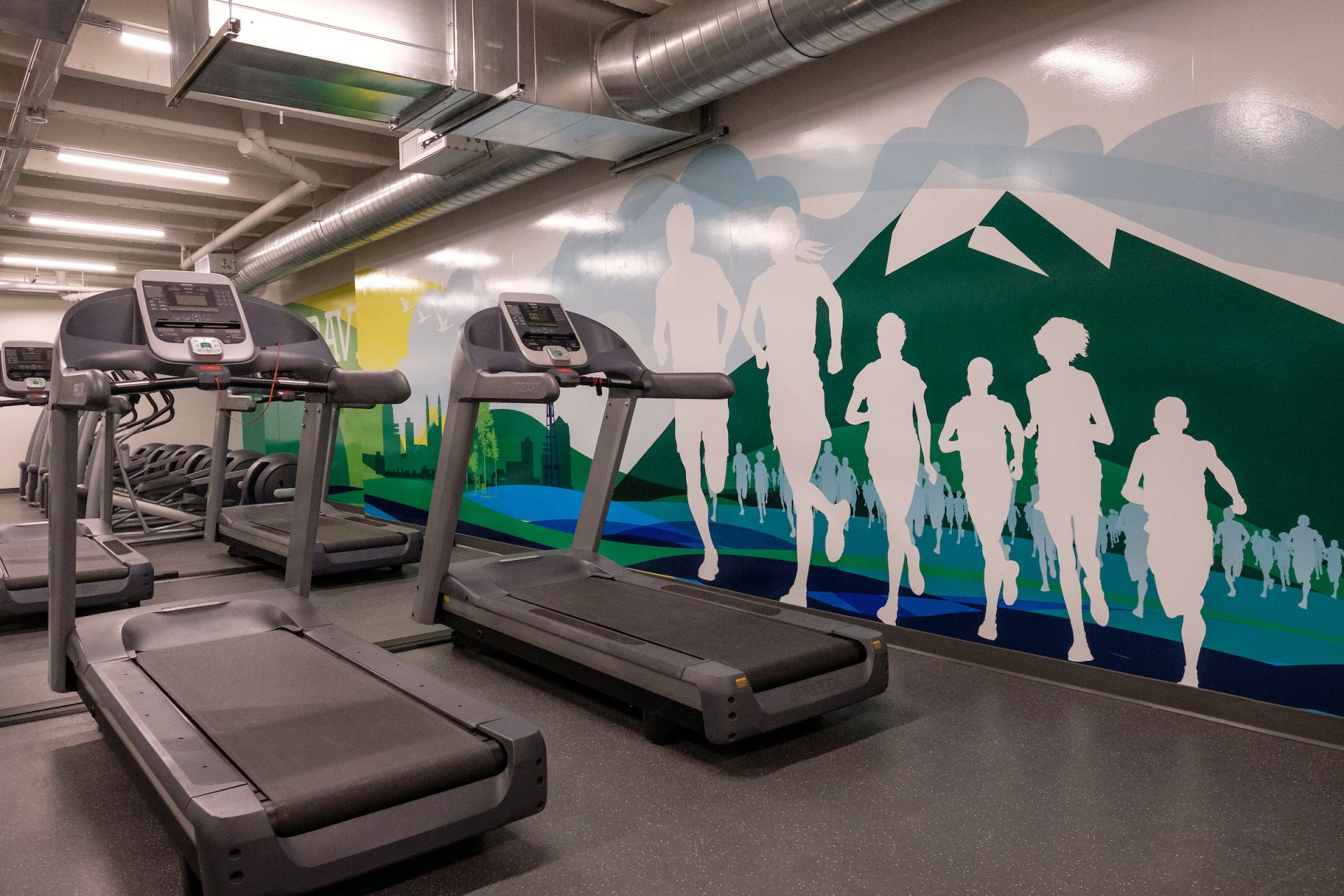 Set against a mural backdrop of runners at Greenlake, the cardio workout room is a key feature of a number of our physical education classes and is used for cross training by a variety of sports. This space is also used as an on-campus fitness center before and after school, adding to wellness opportunities for faculty/staff and students.