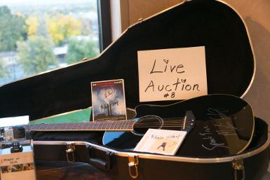 BCD Gala auction item