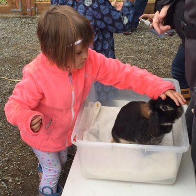 Petting Zoo (PreK)